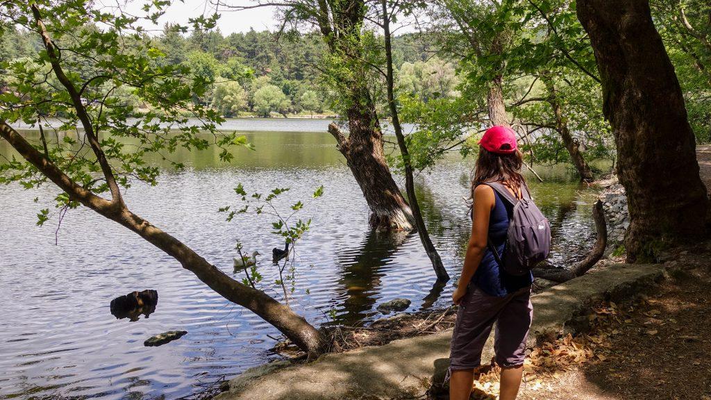 Karagöl Tabiat Parkı kamp