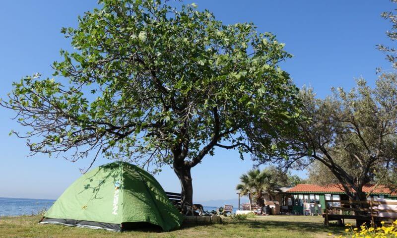 Assos Kamp