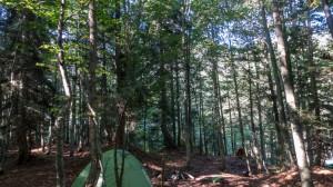 borçka karagöl kamp