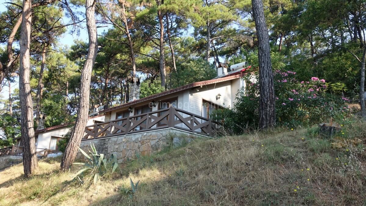 Akyaka orman evleri