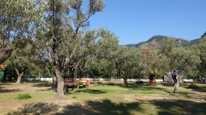 Kazdagi Turumuz ve Assos Kampı